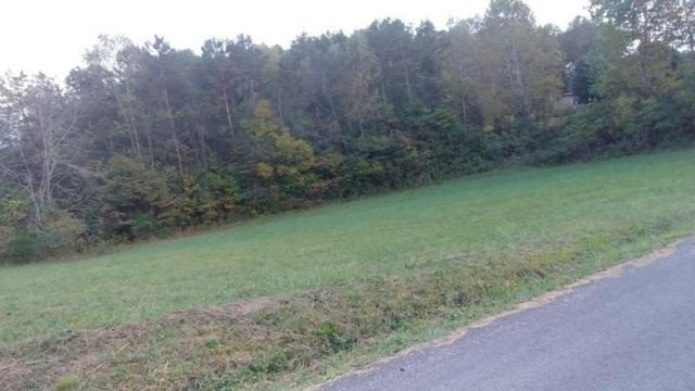 Powell Valley Shores Circle, LaFollette, TN 37766 (#1044803) :: Billy Houston Group
