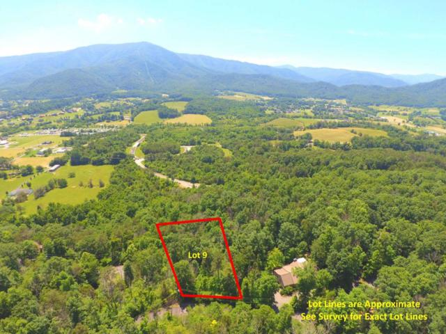 Quail Way, Sevierville, TN 37862 (#1044894) :: Billy Houston Group