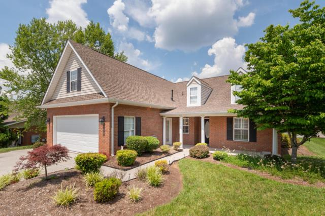 7002 Winter Oaks Way, Knoxville, TN 37918 (#1044953) :: Billy Houston Group