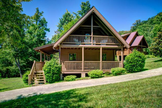 107 Poplar Lane, Caryville, TN 37714 (#1044962) :: Billy Houston Group