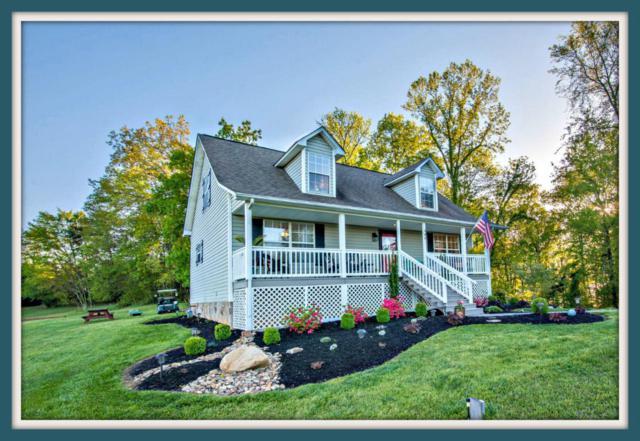 409 Lake Vista Drive, White Pine, TN 37890 (#1045000) :: Billy Houston Group