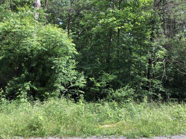 802 Ojibwa Lane, Crossville, TN 38572 (#1045069) :: Shannon Foster Boline Group