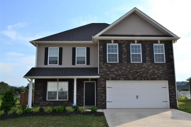 2616 Southwinds Circle, Sevierville, TN 37876 (#1045139) :: Billy Houston Group