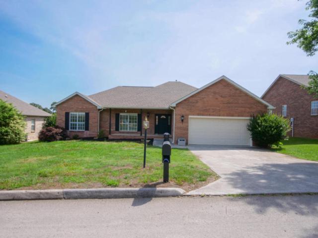 1064 Saint Johns Drive, Maryville, TN 37801 (#1045179) :: Shannon Foster Boline Group