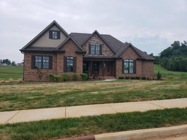 525 Barnsley Rd, Knoxville, TN 37934 (#1045198) :: Shannon Foster Boline Group