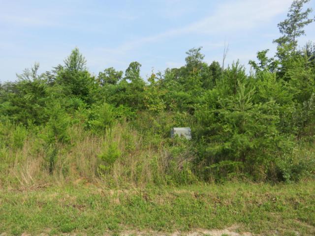 Jones Rd, Tellico Plains, TN 37385 (#1045345) :: Billy Houston Group