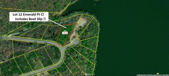 Emerald Pointe Circle, Rockwood, TN 37854 (#1045417) :: Billy Houston Group