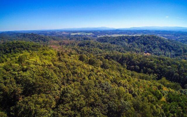 536 Anderson Rd, Sweetwater, TN 37874 (#1045542) :: Billy Houston Group