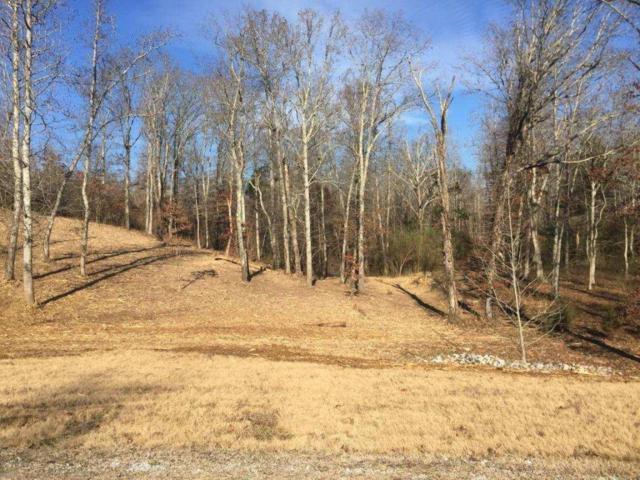 W. Mountain Lot 380, Rockwood, TN 37854 (#1045658) :: Shannon Foster Boline Group
