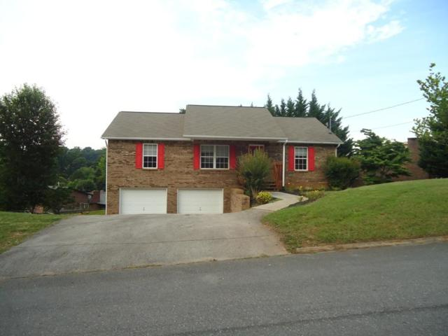 448 Cherokee Hills Rd, Seymour, TN 37865 (#1045679) :: Billy Houston Group