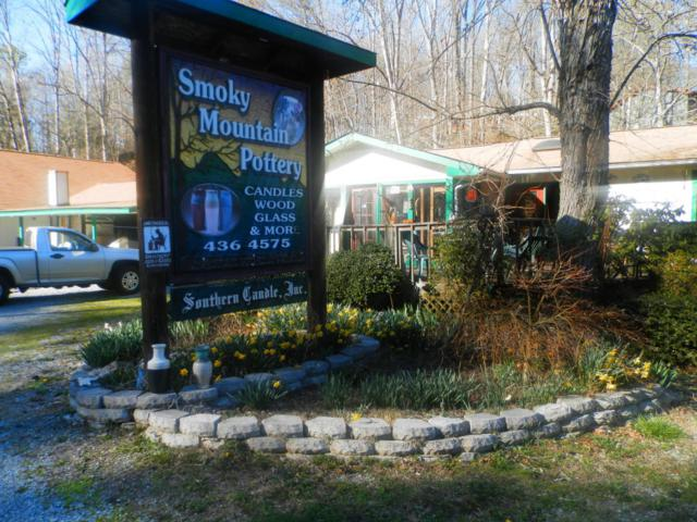 744 Powdermill Road Rd, Gatlinburg, TN 37738 (#1045690) :: SMOKY's Real Estate LLC