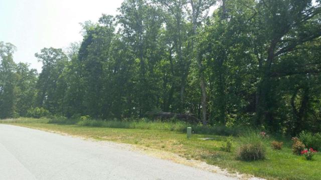 118 Roaming Fawn Drive, Rockwood, TN 37854 (#1045811) :: Shannon Foster Boline Group