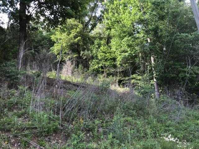 Mt Vista Drive, Vonore, TN 37885 (#1045867) :: Billy Houston Group