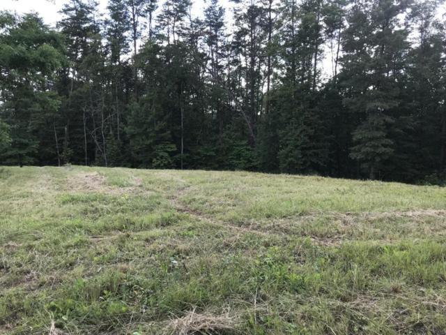 Mt Vista Drive, Vonore, TN 37885 (#1045872) :: Billy Houston Group