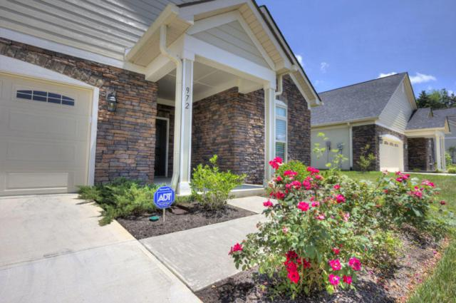 972 Pryse Farm Blvd, Knoxville, TN 37934 (#1045896) :: SMOKY's Real Estate LLC