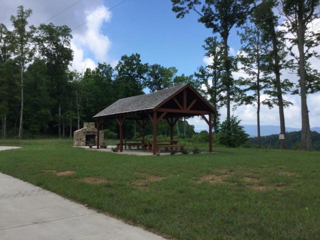 L 123 Mountain Way, Sharps Chapel, TN 37866 (#1045989) :: Billy Houston Group
