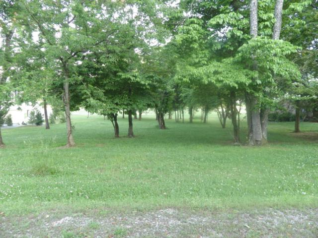 109 Nunnehi Tr, Vonore, TN 37885 (#1046000) :: Shannon Foster Boline Group