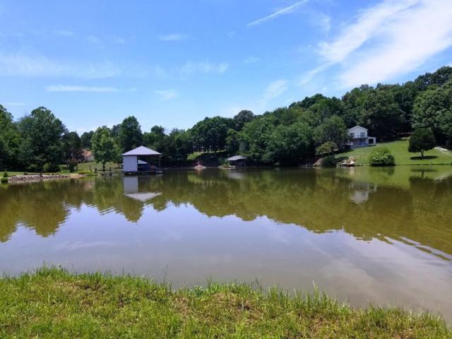 173 Bat Creek Shores Lane, Vonore, TN 37885 (#1046068) :: Billy Houston Group