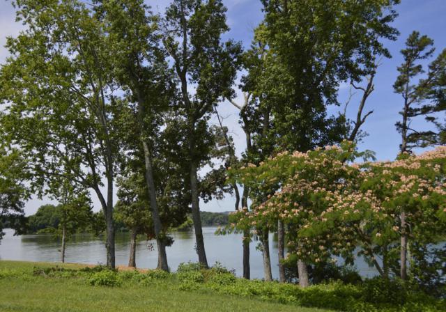 Lot 457 Pointe Vista Drive, Rockwood, TN 37854 (#1046083) :: Shannon Foster Boline Group