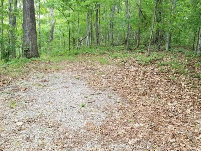 Lot 3 Peregrine Drive, Tazewell, TN 37879 (#1046086) :: Billy Houston Group