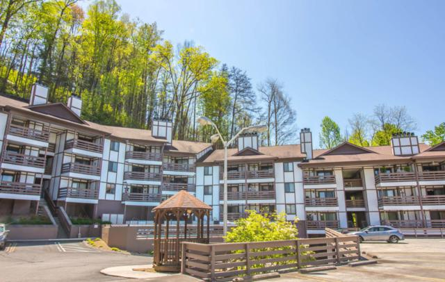 616 Turkey Nest Rd Rd #302, Gatlinburg, TN 37738 (#1046118) :: SMOKY's Real Estate LLC