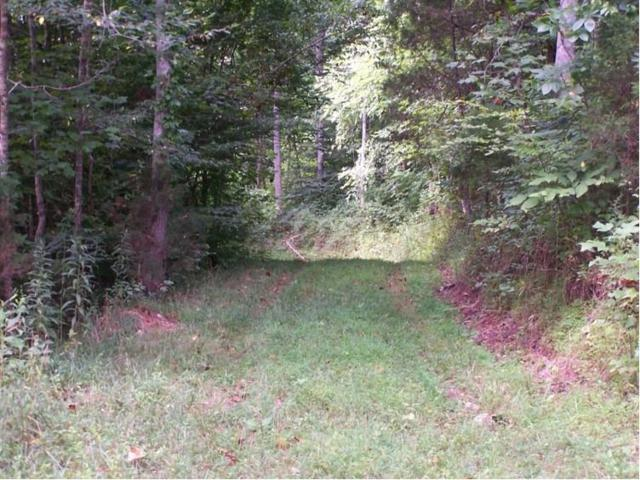 Old Hwy 28, Crossville, TN 38555 (#1046125) :: Shannon Foster Boline Group