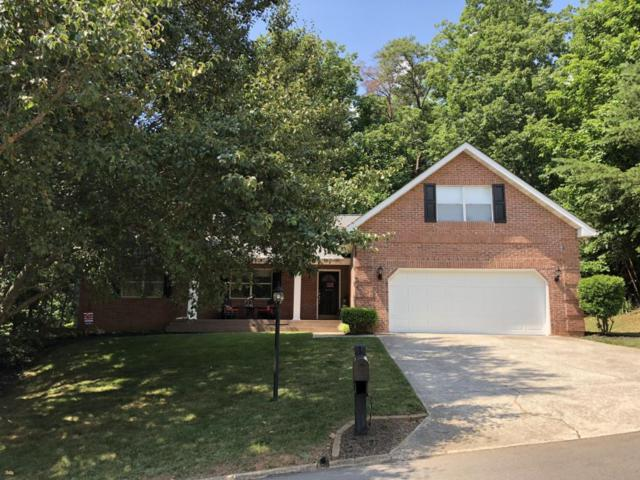 722 Devictor Drive, Maryville, TN 37801 (#1046150) :: Shannon Foster Boline Group