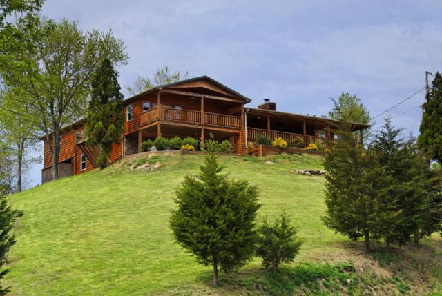 1515 Bluebird Cove Lane, Sevierville, TN 37862 (#1046216) :: The Terrell Team