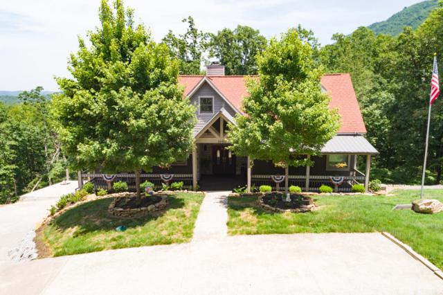3690 Buck Hollow Rd, Maryville, TN 37803 (#1046229) :: Shannon Foster Boline Group