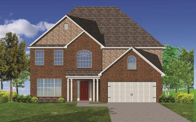 10658 Bald Cypress Lane, Knoxville, TN 37922 (#1046281) :: Billy Houston Group