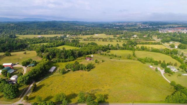 Boyds Creek Highway, Sevierville, TN 37876 (#1046338) :: Billy Houston Group