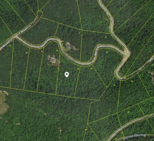 Wolf Branch Lane, Crawford, TN 38554 (#1046352) :: Billy Houston Group