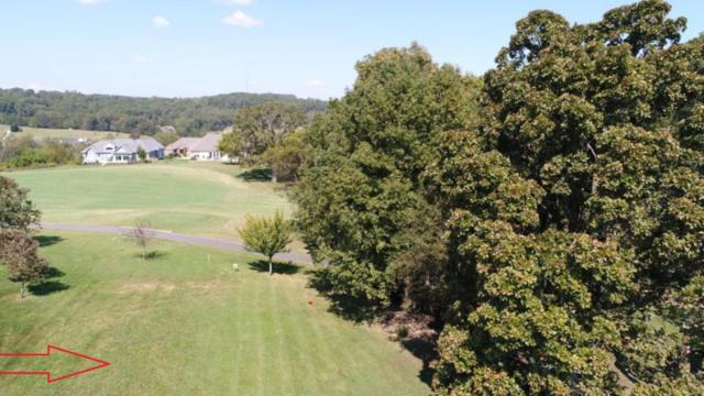 127 Walelu Trail, Vonore, TN 37885 (#1046372) :: Shannon Foster Boline Group