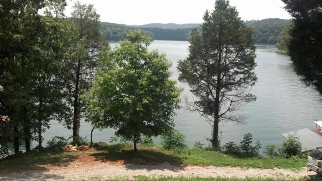 Lake Hollow Rd, Speedwell, TN 37870 (#1046406) :: Billy Houston Group