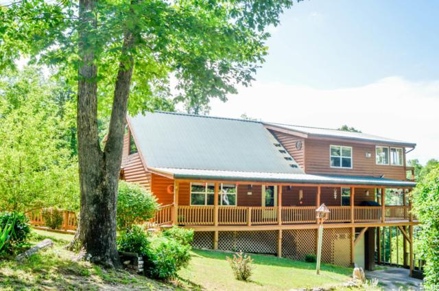 120 White Creek Court, Deer Lodge, TN 37726 (#1046478) :: Billy Houston Group