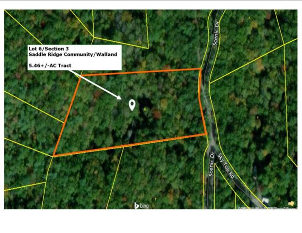 Walnut Flats Rd, Walland, TN 37886 (#1046541) :: Billy Houston Group
