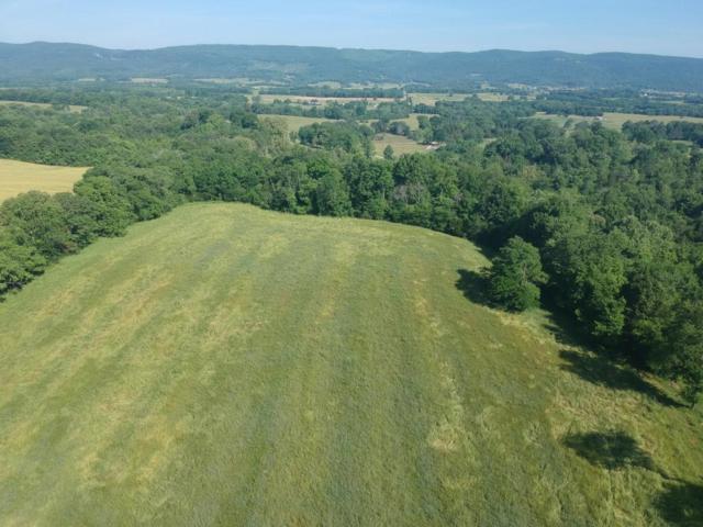 360 N Lucky D Farm Rd, Pikeville, TN 37367 (#1046577) :: Billy Houston Group