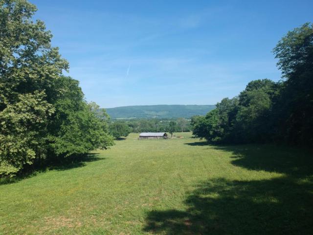 360 N Lucky D Farm Rd, Pikeville, TN 37367 (#1046588) :: Billy Houston Group