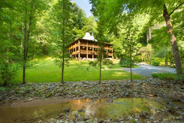 3014 N Clear Fork Rd, Sevierville, TN 37862 (#1046589) :: Billy Houston Group