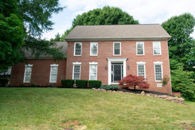 1229 Whitower Drive, Knoxville, TN 37919 (#1046626) :: Billy Houston Group
