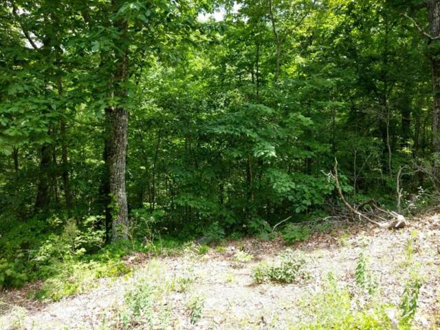 Lot 3 Scenic Woods Way, Sevierville, TN 37876 (#1046630) :: Billy Houston Group