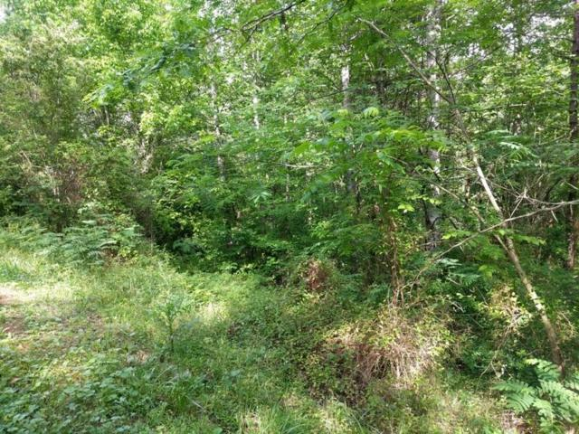 Lot 25 Shady Grove Rd, Sevierville, TN 37876 (#1046715) :: Billy Houston Group