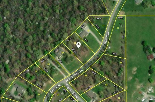 Woodhaven Drive, Vonore, TN 37885 (#1046757) :: Billy Houston Group
