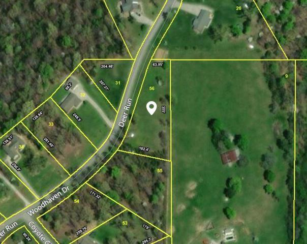 Woodhaven Drive, Vonore, TN 37885 (#1046772) :: Billy Houston Group