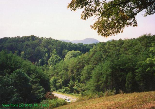 Lot 13 & 14 Tanglewood Drive, Sevierville, TN 37876 (#1047077) :: Billy Houston Group
