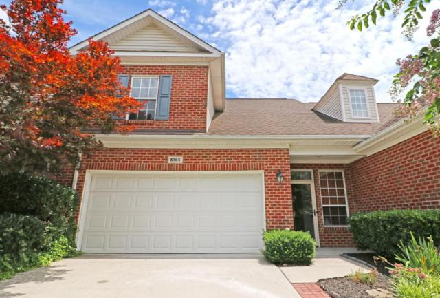 8364 David Tippit Way, Knoxville, TN 37931 (#1047133) :: SMOKY's Real Estate LLC