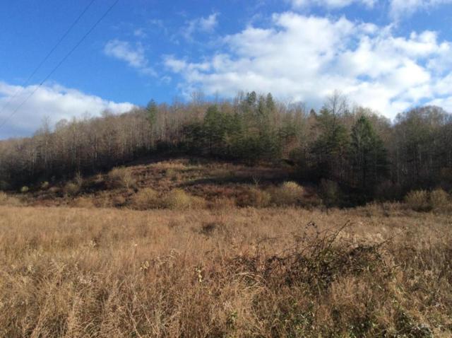 Mine Rock Rd, Oneida, TN 37841 (#1047161) :: Billy Houston Group
