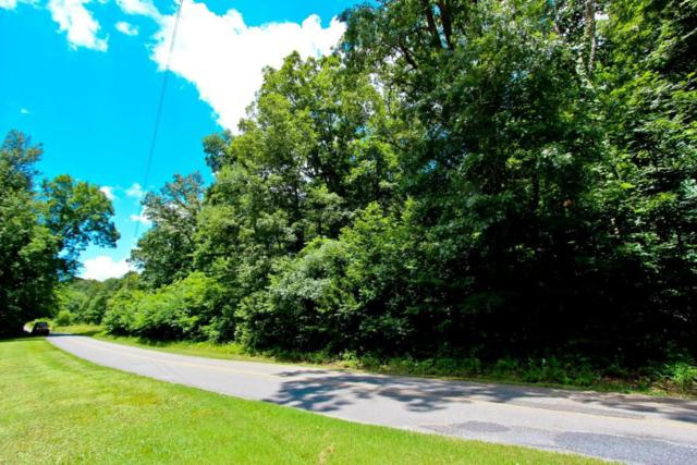 Lot 18 Sierra Rd, Newport, TN 37821 (#1047226) :: Billy Houston Group