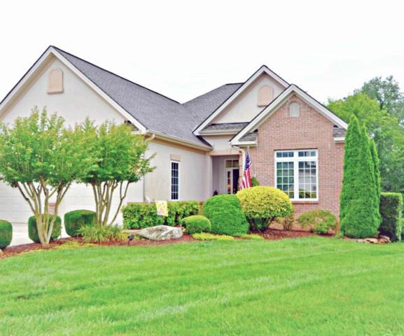 137 Heron Court, Vonore, TN 37885 (#1047338) :: SMOKY's Real Estate LLC