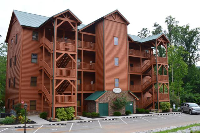 121 Evergreen Circle #102, Caryville, TN 37714 (#1047340) :: SMOKY's Real Estate LLC